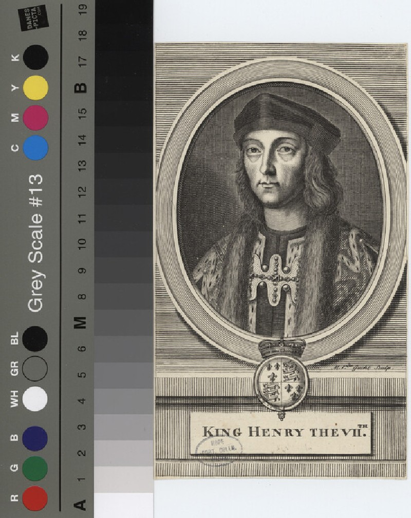 Portrait of Henry VII (WAHP12138.1, record shot)
